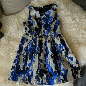 NWT Kensie bright Cobalt combo dress sz Lg
